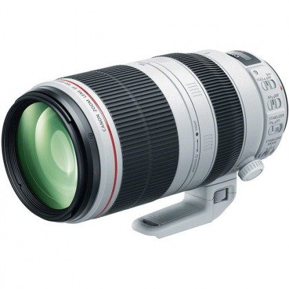 Canon EF 100-400mm f/4.5-5.6L IS II USM Lens (Import)